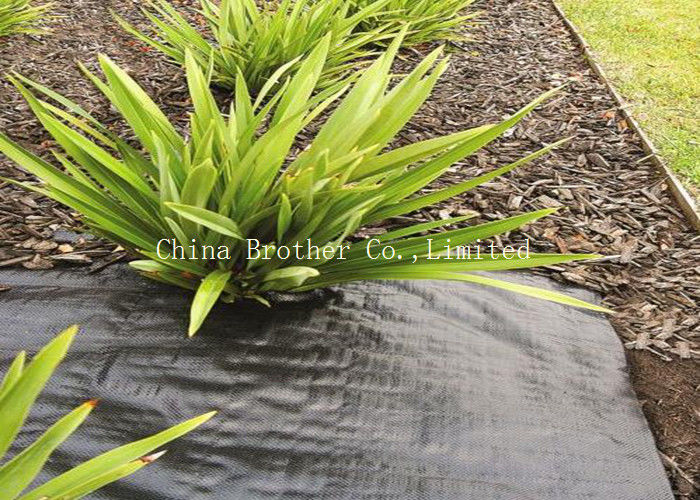 Water Permeable Ground Weed Control Fabric Suppressant Membrane Eco Friendly